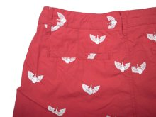 Other Photo2: EMERICA / VUELO SHORTS / ショーツ