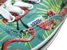 Other Photo3: VANS / AUTHENTIC